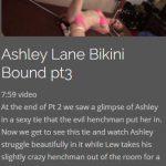 Ashley Lane Bikini Bound 3