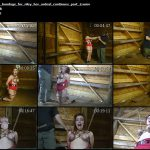 barnyard bondage for riley her ordeal continues part 2