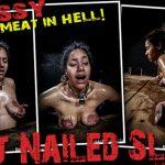 Pussy – Tit Nailed Slut