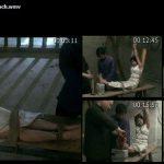 Inquisition BDSM – Shasha in tiger bench 1